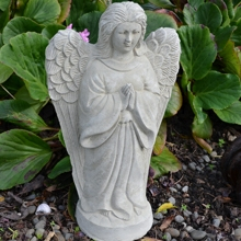 angel_prayingbku01_2.jpg