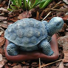 baby-tortoise.jpg