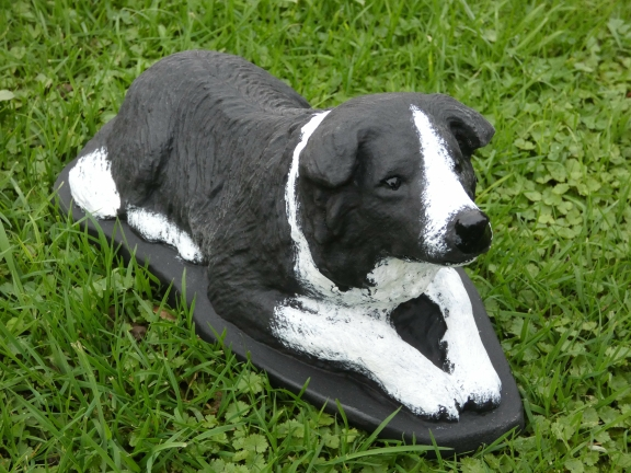 border_collie.jpg