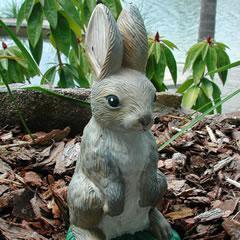 bunny-standing.jpg