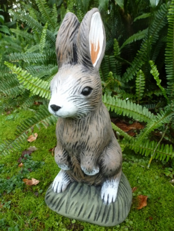 bunny_standing.jpg