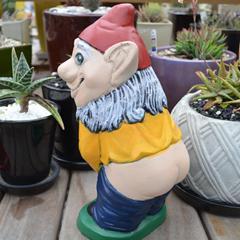 buttflasher_gnome.jpg