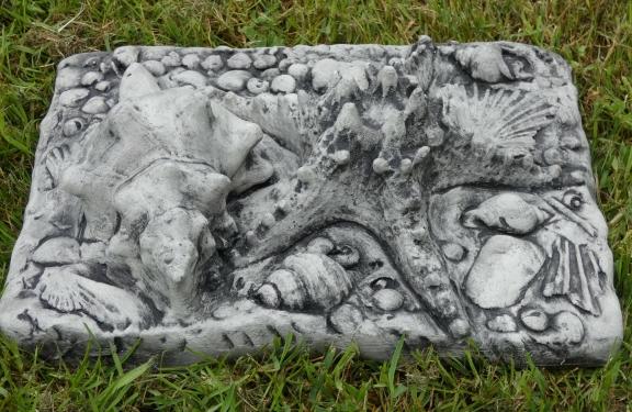 fossil_stone_star_fish.jpg
