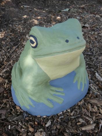 frog_on_rock.jpg