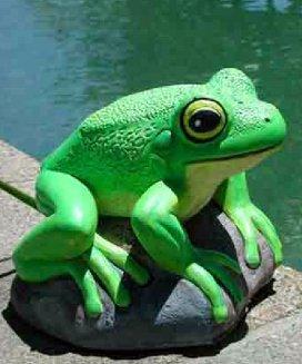 frogbkan04.jpg