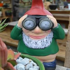 gnome_voyeur.jpg