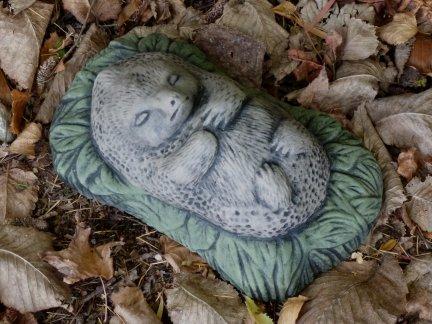 hedgehog_sleeping.jpg