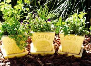 herb_planter_classic.jpg