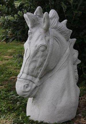 horse_head.jpg