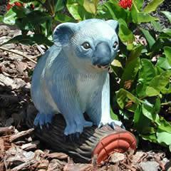 koala-on-branch.jpg