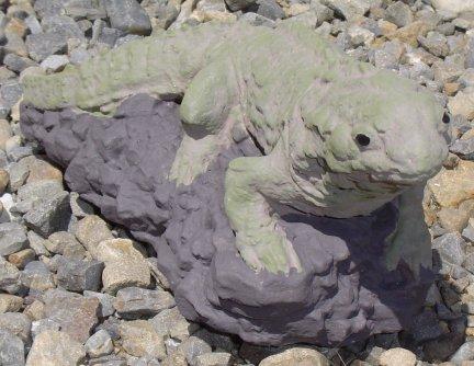 lizardcc022.jpg