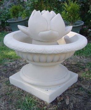 lotus__jardinere.jpg
