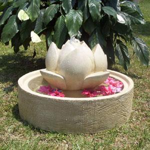 lotus_oval_base.jpg