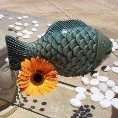 lucky-fish.jpg