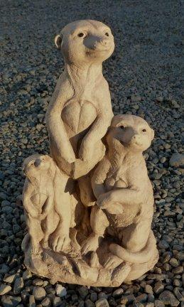 meerkat_family.jpg