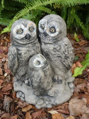 owl_family.jpg