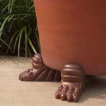 planter_feet_claw.jpg