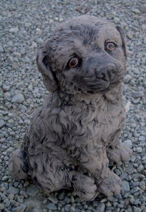 puppy_sitting.jpg