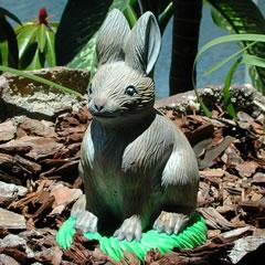 rabbit_2.jpg