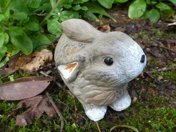 rabbit_sml_coarse_fur.jpg