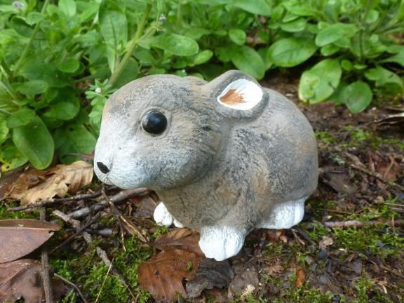 rabbit_sml_fine_fur.jpg