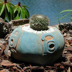 round-cactus-inca-design.jpg