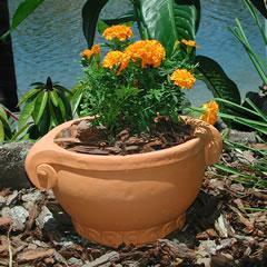scroll-bulb-planter.jpg