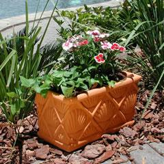 shell-planter-box.jpg