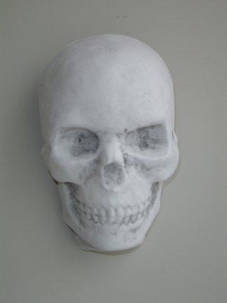 skull_plaque.jpg