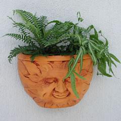 sun-wall-planter.jpg