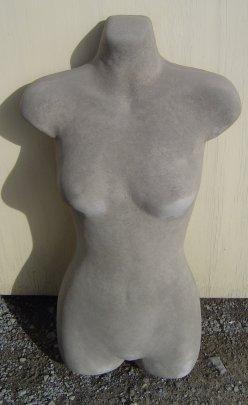 torso_female.jpg