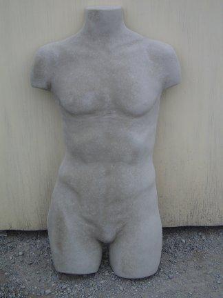 torso_male.jpg
