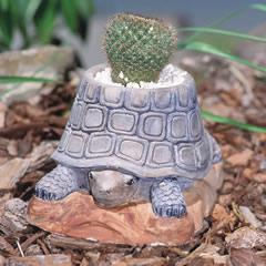 tortoise-planter.jpg