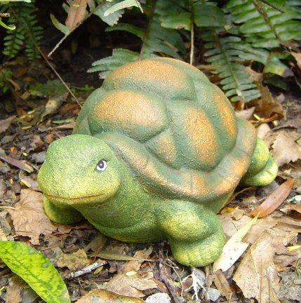tortoise_med.jpg