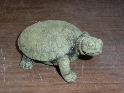 tortoise_sml.jpg